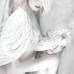 """White Light"". Ashley Lynn and Fox Chalker"