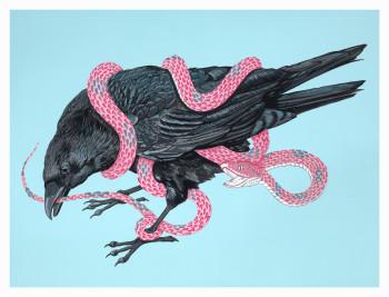 Crow New Web