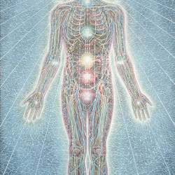 "Alex Grey ""Psychic Energy"""