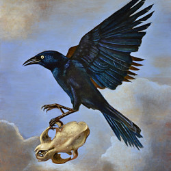 "Benjamin Vierling ""Bird with Skull"""